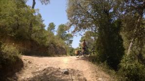 penedes pyörä 2