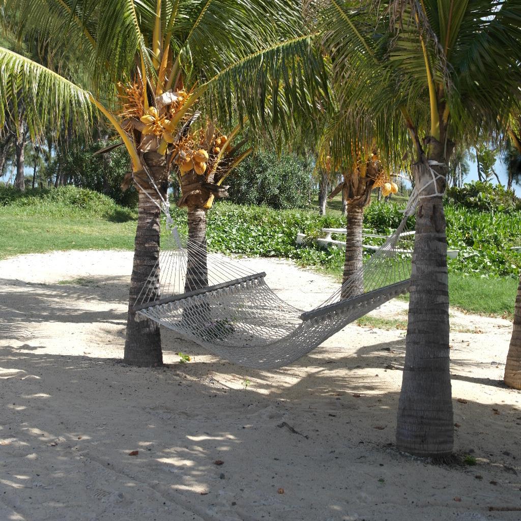riippukeinufiiliksiä Mauritiukselta.
